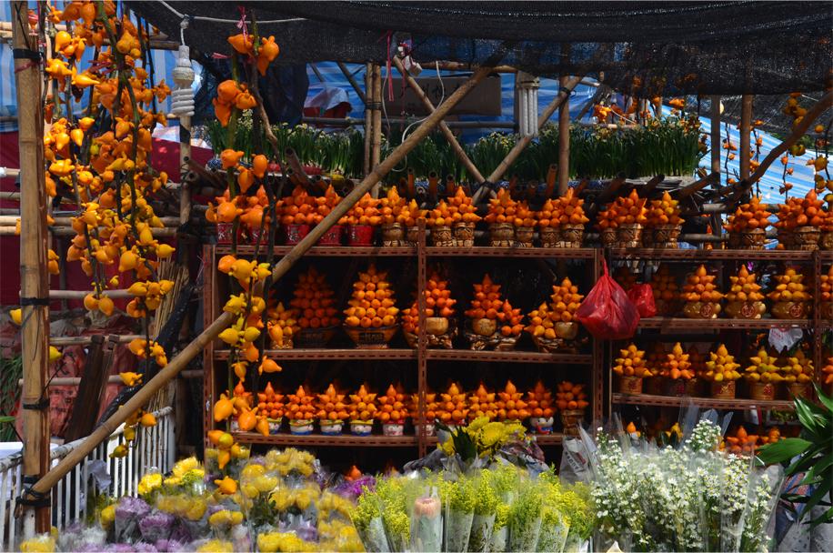 CNY flower market_12