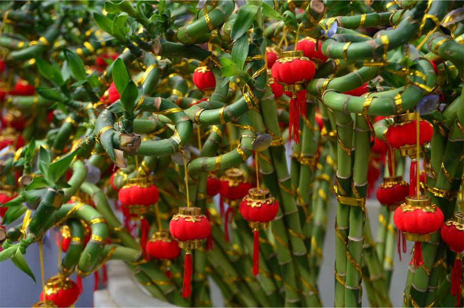 CNY flower market_15