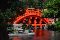 The orange bridge