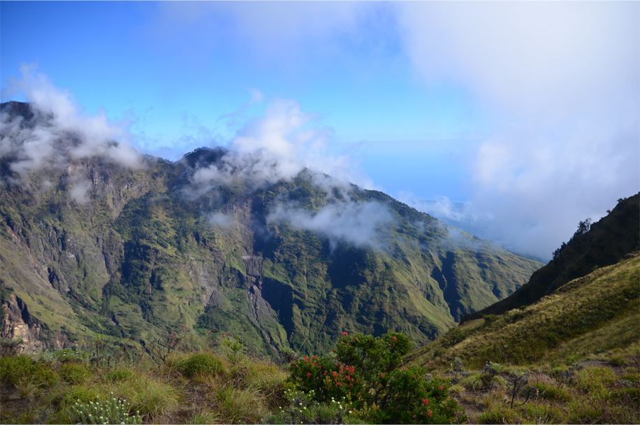 Rinjani's lush slopes