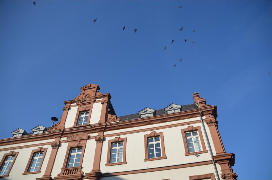 Speyer_2