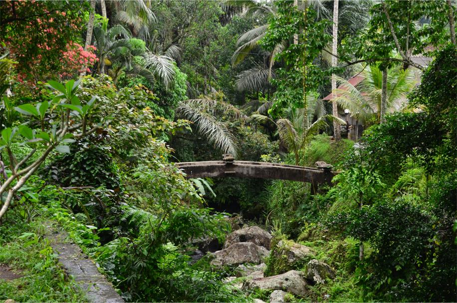 Gunung Kawi_15
