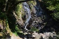 A silken cascade