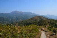 Tai Mo Shan, Hong Kong's highest peak, rises in the background