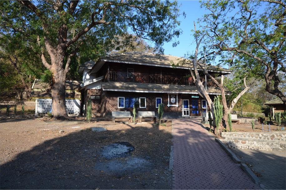 Baluran guesthouse